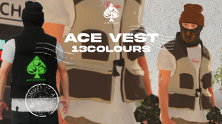 Ace Accessories Vest Pack for xlgm