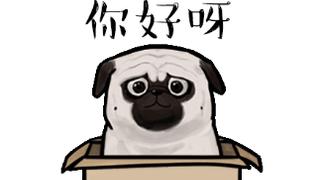 Pug Hell