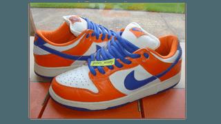 Unofficial Nike SB Dunk Danny Lupa Shoe!