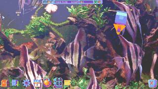 HypnoQuarium