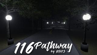116 Pathway