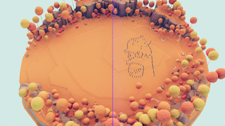 Fight the Homer Chaper