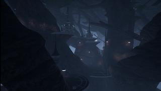 Kashyyyk Shadowlands