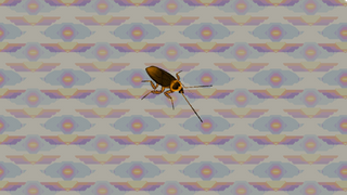 Michael the Cockroach
