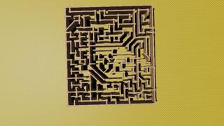 shy guy  maze