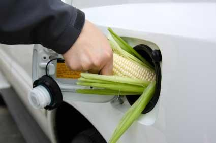 corn-in-the-gas-tank.jpg