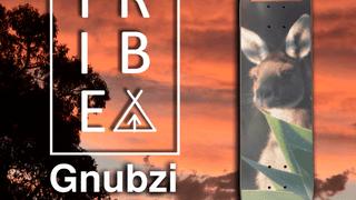 Tribe - Gnubzi Guest Deck