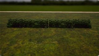 Terrain Hedge