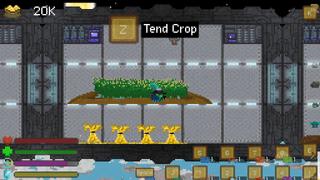 Under Planting