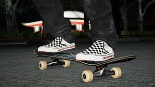Vans Slip-On 98 DX (Anaheim Factory) OG Fast Times