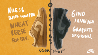 Nike SB - Colors by: Reese and Gino