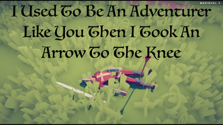 I Used To Be An Adventurer Like You...