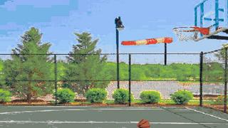 Radical Software's Virtual Basketball