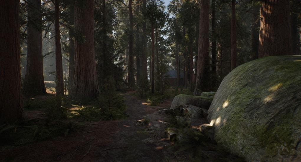 path.1.jpg