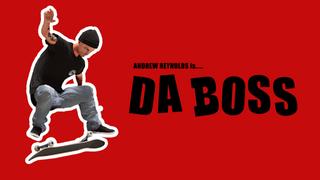 The Boss - Andrew Reynolds' Pro Skin