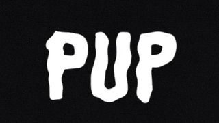 PUP merch pack