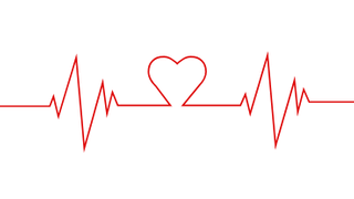 Heart Beat with Heart Sign - ECG - lifeline