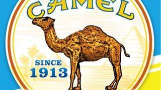 Vintage Camel tshirts pack