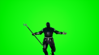 Greenscreen 2.0