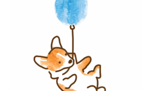 Corgi  with blue balloon