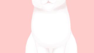 Live-2D-tororo小白猫