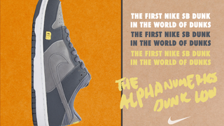 Nike SB Dunk Low Alphanumerics [Orange Label]