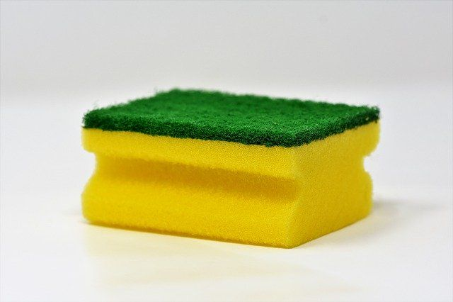 sponge-3081410_640.jpg