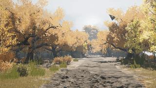 Darkwood trails reuploaded