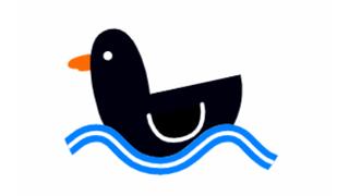 floting duck