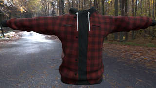 Red Flannel w/ black hoodie