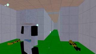 (Level 2) Prison Maze