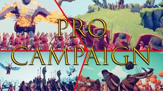 The Pro Campaign
