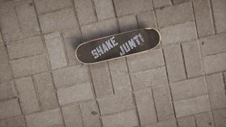 Used Shake junt grip